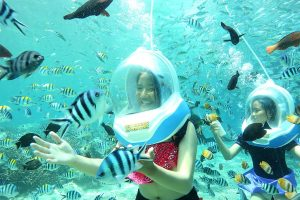 Bali Ocean Walking | Sai Bali Tours